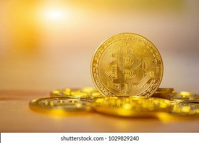 cryptocurrency,Bitcoin Gold (BTG) on gold background with copy space - as the result of latest Bitcoin's digital money