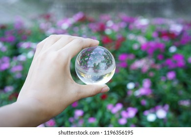 crystal ball and flowers