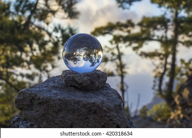 crystal ball and forest