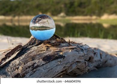 Crystal clear ball on the dry snag