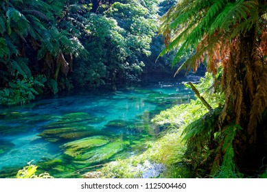 Crystal clear river in South Waikato, New Zealand