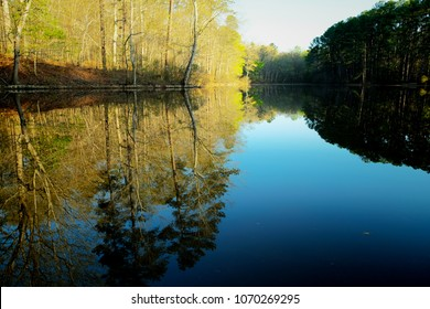 Crystal clear springtime reflections in the water at the pond at Lake Wheeler Park in Raleigh North Carolina, Triangle area, Wake County.