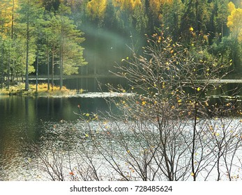 crystal clear and transparent air of the autumn forest. The lake in Larvik, Norway.