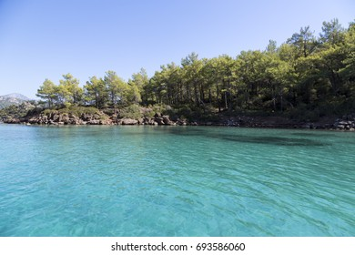 Crystal clear turquoise water with the land and the tree view