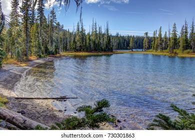 Crystal clear waters of Waldo Lake, Oregon.