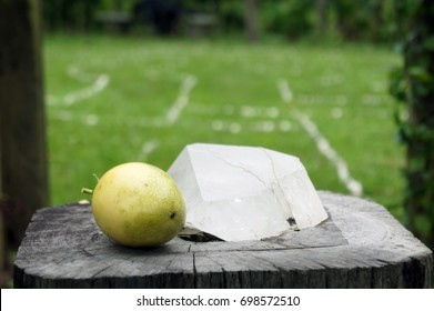Crystal and Mango Placed on Top of a Log in Font of a Labyrinth for Walking Meditation - Blurry Background with Lots of Copy Space