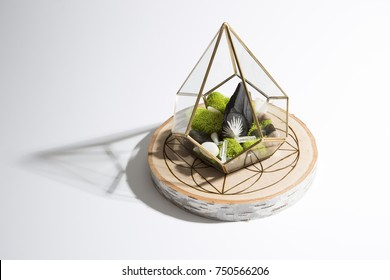 Crystal and Moss terrarium on wooden grid