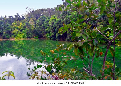 Crystal Pool in the Khao Nor Chuchi forest