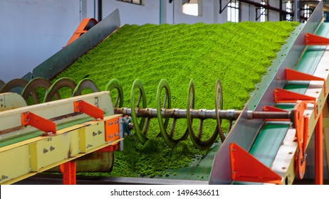 CTC (crush, tear & curl) Plant in a black tea manufacturing factory