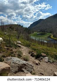 Cub Lake and Lily Pads