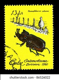 """CUBA - CIRCA 1980: A Stamp printed in Cuba shows the image of a Rhino Beetle with the description """"Homophileurus cubanus"""" from the series """"Insects"""", circa 1980"""