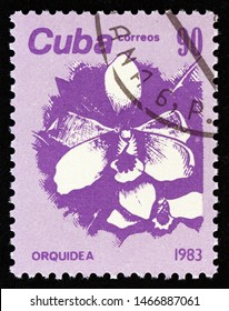"""CUBA - CIRCA 1983: A stamp printed in Cuba from the """"Flowers"""" issue shows Orchid, circa 1983."""