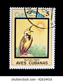 """CUBA - CIRCA 1983: A stamp printed by Cuba shows tropical Bird , stamp is from the series, circa 1983. """"Tropical birds"""", series, 15 stamps"""