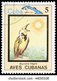 Cuba - CIRCA 1983: A stamp printed in Cuba shows bird Sturnella magna, circa 1983