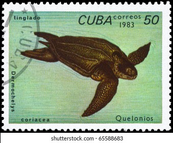 "CUBA - CIRCA 1983: A Stamp printed in CUBA shows the image of a Leatherback Turtle with the description ""Dermochelys coriacea"" from the series ""Turtles"", circa 1983"
