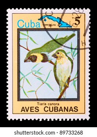 CUBA - CIRCA 1983: a stamp printed by CUBA shows birds, series animals, circa 1983