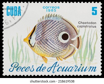 Cuba - CIRCA 1985: A stamp printed in Cuba shows aquarium fish Chaetodon capistratus, circa 1985