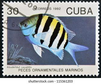 CUBA - CIRCA 1992: A stamp printed in Cuba dedicated to ornamental fish, shows abudefduf saxatilis, circa 1992