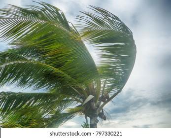 Cuba during a hurricane