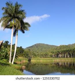 Cuba, famous UNESCO Biosphere Reserve in Sierra del Rosario mountain range - Las Terrazas.