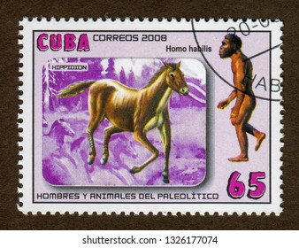 Cuba stamp circa 2008: a stamp printed in  Cuba shows Paleolithic men and animals , hippidion and Homo habilis illustration.
