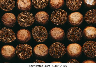 Cuban Cigars, Close up.