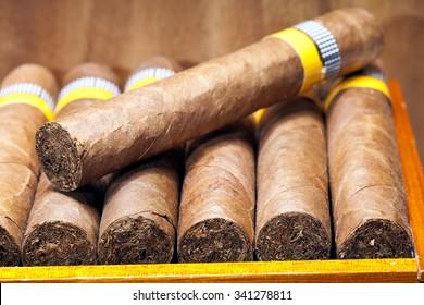 The Cuban cigars, hand made