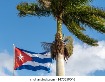 Cuban symbols, a large national flag of Cuba in the wind. In the front, there is a Royal Palm tree which is the national tree of the Caribbean island.