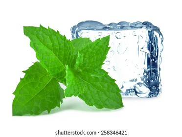 cube ice and mint