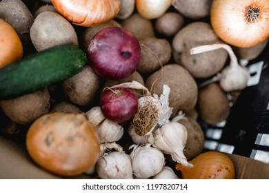 cucumber, onion, potato