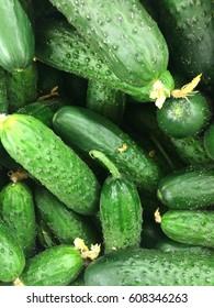 Cucumbers in a market