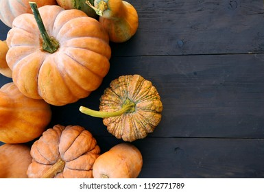 Cucurbita moschata winter squashes and pumpkins varieties on black wooden boards background