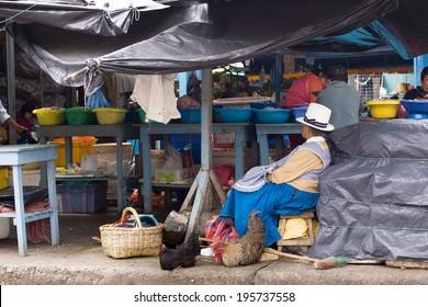 CUENCA, ECUADOR, Feb, 16 2012.   Market shopping in Cuenca Ecuador Feb 16 , 2012.  markets are an important part of life in present day ecuador.