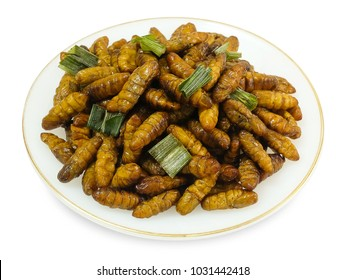 Cuisine and Food, Plate of Thai Traditional Deep Fried Marinated Coconut Worms with Herbs Isolated on White Background. One of The Most Popular Street Food in Thailand.