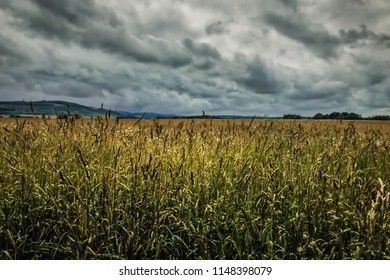 Culloden Battlefield in Scotland