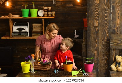 Cultivate concept. Mother and son cultivate flower in pot. Mother and child cultivate potted flower. Cultivate the soil.