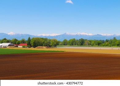 Cultivated area with green environment and white mountain view in the back in Hokkaido, Japan
