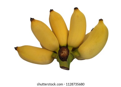 Cultivated banana Yellow skin ripened on a white background.