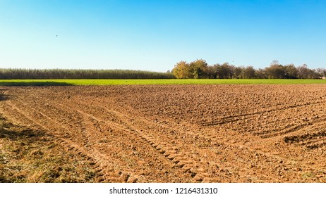cultivated field prepared for sowing