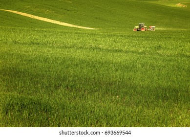 Cultivated field in Val d'Orcia, Tuscany, with a tractor working the land. 03/25/2016