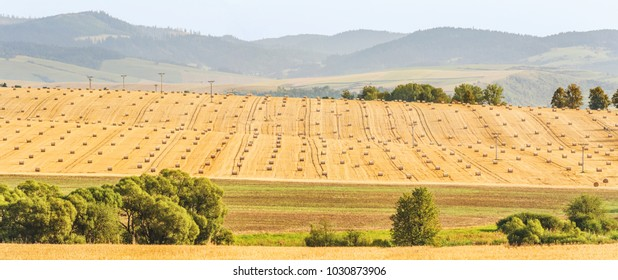 Cultivated fields after harvest. Straw bales on the field. Rural landscape with misty mountains in the distance.