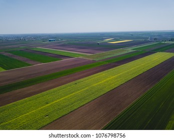 Cultivated fields seen from the bird's eye view, aerial view of rural landscape