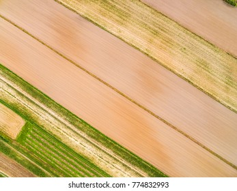 Cultivated fields seen from the bird's eye view. Lines and colors created by fields seen from the air.