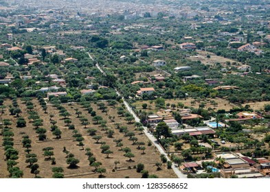 Cultivated groves of trees and rural villas leading towards the town of Cinisi in the Palermo district of Sicily.  Aerial view on a sunny summer morning.