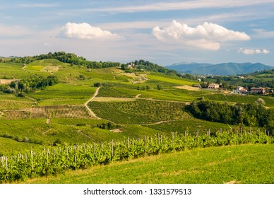 Cultivated hills in Oltrepo' Pavese (Lombardy, Italy)