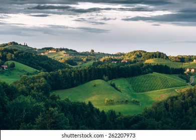 Cultivated Hills of the Southern Styria Wine Trail
