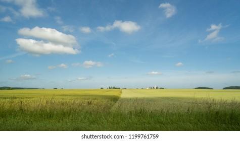 Cultures agricoles France
