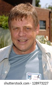 "CULVER CITY - JULY 22: Mark Hamill at the ""Choose Your Own Adventure: The Abominable Snowman"" DVD Release Party at Star Eco Station on July 22, 2006 in Culver City, CA."