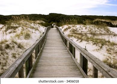 Cumberland Island Walkway