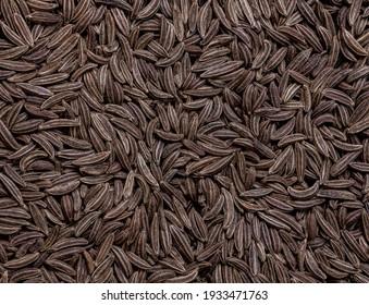 Cumin Jeera spice background. close-up view of zira. Cumin seeds from above. High angle photo of zira jeera cumin spices